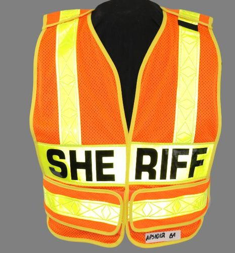 ORG PUBLIC SAFETY VEST/2LP/HS